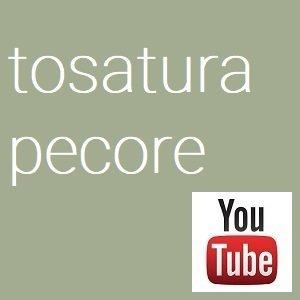 tosatura